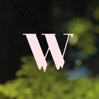 Wilderness Festival 2017
