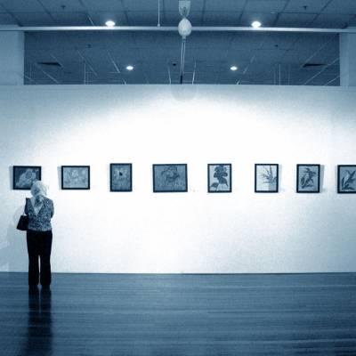 Reflexe: Vizuální umění!